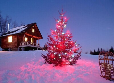 圣诞节是哪天