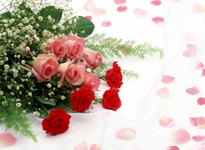 33朵黄玫瑰花语_33朵玫瑰花语是什么